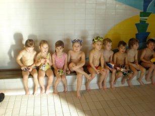 MŠ Plavání 2011