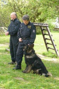 policie ČR 2012